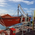 Single Arm Davit/Rescue Boat